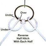 Reverse Half Hitch