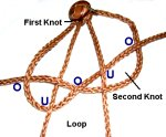 Make the Next Knot