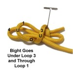Thru Loops
