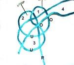 Loop 4