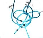 5th Loop