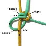 Loop 3