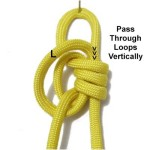 Through Loops