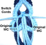 Switch Cords
