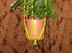 Basic Plant Hanger
