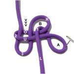 Loop B