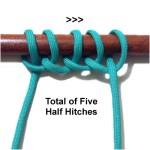 Five Knots