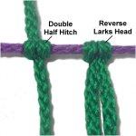 DHH vs LH