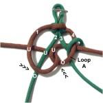 Loop C