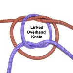 Linked OH Knots