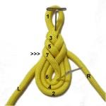 Loop 7